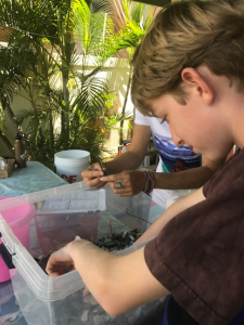 student working with water testing equipment