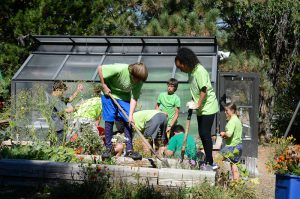 students working in schoolyard habitat garden